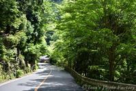 周山街道を走り「栂ノ尾」から新緑の高山寺へ - Tomの一人旅~気のむくまま、足のむくまま~