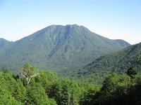 日光 太郎山のシャクナゲ群落を行く     Mount Tarō in Nikkō National Park - やっぱり自然が好き