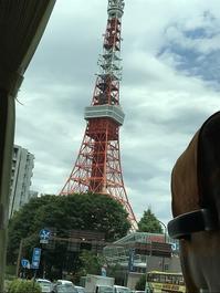 """""""はとバス""""で東京観光♫ - ドイツ語のある暮らし"""