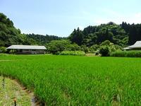 生きものってすごいなー - 千葉県いすみ環境と文化のさとセンター