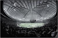 野球観戦(東京ドーム) - コバチャンのBLOG