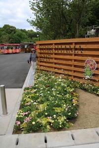 春の出来事~全国都市緑化よこはまフェア 里山ガーデン~ - 小さな庭のひだまりで