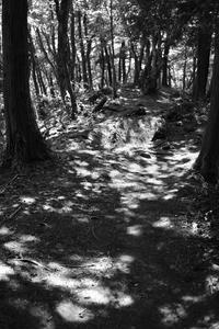 倉岳山3 モノクロセレクト - デジカメ持ってING