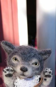 ドールワールドフェスティバル明日より開催です - Aki  ~羊毛のオオカミたち~