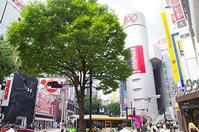 6月16日(金)今日の渋谷109前交差点 - でじたる渋谷NEWS