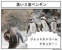 動物実写1コマ漫画、ペンギンのジェットストリームアタック♪ - 思い出に変わる日々