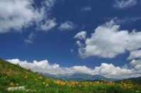 初夏の彩り - 四季燦燦 癒し系~^^かも風景写真