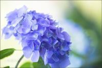 Blue - 我夢工房