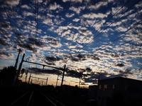 6月16日 今日の写真 - ainosatoブログ02