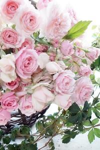 乙女心くすぐるスプレー咲き和ばらのブーケ - お花に囲まれて
