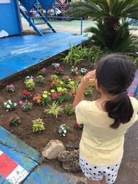 【つぶやき】花壇 - 新東京フォトブログ
