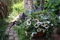この場所で - CHIROのお庭しごと