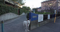 Vol.1196 尻手二丁目公園 - 小太郎の白っぽい世界