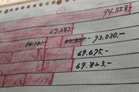 食費まるみえ計画 - これが、わが家の家計簿です