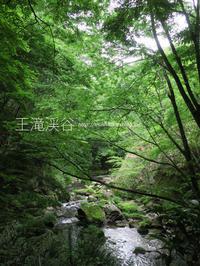 """豊田の""""王滝渓谷""""を下見してみたよ♪@愛知県豊田市【フォトムービーあり】 - yamatoのひとりごと"""