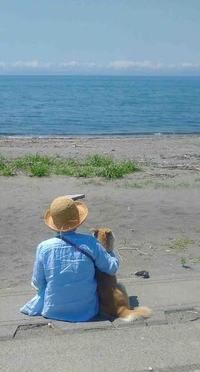 ようやく、夏の気配 - toujours comme ca (いつも こんな感じ)