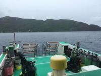 雨。。。カメラが。。。 - 奄美大島 ダイビングライフ    ☆アクアダイブコホロ☆