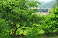 緑の撮影ポイント - 今日も丹後鉄道