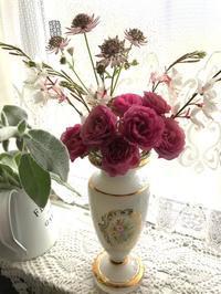 庭の草花 - ゆりかごのつぶやき