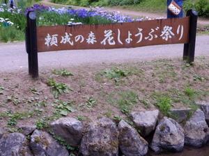 花菖蒲祭 - 勝手に言ってます