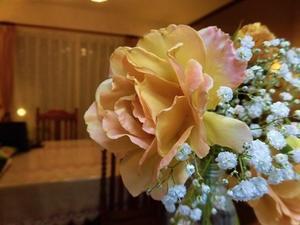 バタースコッチの2番花を室内で・・・ - mr&mrs kajiの小さなバラの庭