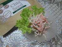 美容と健康に☆ホワイトチアシード入りごぼうと人参のサラダ - candy&sarry&・・・2