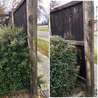 NZで庭仕事(冬の前に) - bluecheese in Hakuba & NZ:白馬とNZでの暮らし