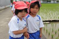なにがいるかな(ばら) - 慶応幼稚園ブログ【未来の子どもたちへ ~Dream Can Do!Reality Can Do!!~】