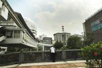 沖縄の旅10(5cut) 車窓から -     ~風に乗って~    Present