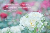 愛と感謝 - 日々の欠片を紡ぐ日々