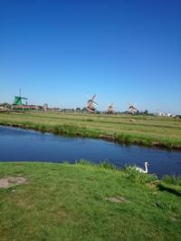 オランダ最終日、風車村 - 晩婚珍生活