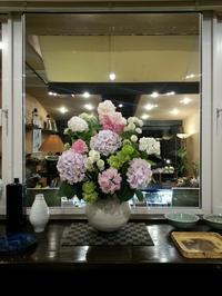 心癒される紫陽花の花々… - Salon de deux H