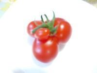 変形・トマト - トムジーのつぶやき3