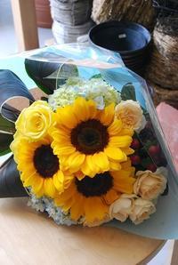 今日は父の日 - 花と暮らす店 木花 Mocca