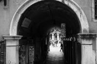 Piazza San Marco - S w a m p y D o g - my laidback life