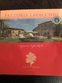 先週行ったフィレンツェ郊外の場所 - OLMI夫人の独りゴチ