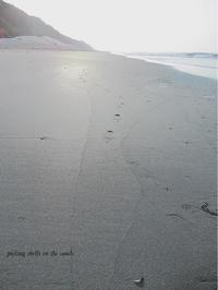 picking shells on the sands 2 - ちょこってぃ