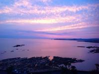 ピンクと白と青の世界 - sobu 2