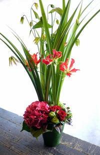 平岸1-5の居酒屋さんの5周年に。「赤系、派手めに」。2017/06/14。 - 札幌 花屋 meLL flowers