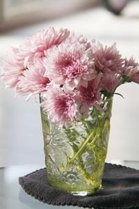 切り花3 モーブ色の小菊 - KAHO's Photo Diary 2