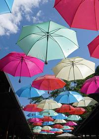 お日様のシャワーを受けてキラキラ光る傘の街♪ ハルニレテラス - きれいの瞬間~写真で伝えるstory~