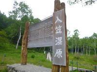 今日のお気に入り写真 花の入笠山 (1,955.1M) に登る - 風の便り