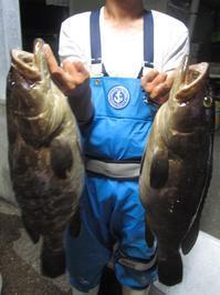 アラ(クエ)釣れました! - Iターンで漁・猟師(直売有)の主人と離島暮らし