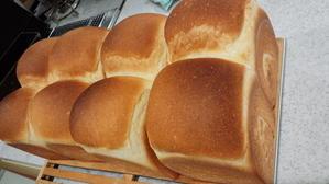 油脂のないパンはダイエットパン??? - 神奈川県川崎市中原区  パン教室Sucre a la neige