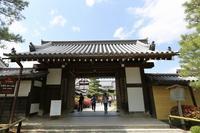 大覚寺 - shio。。のその日暮らし