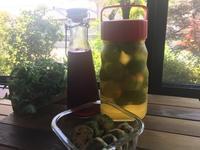 鮭の唐揚げ胡麻酢和えのお弁当  梅と紫蘇 - おうちのこと 備忘録