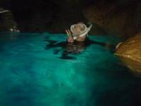 貸切のんびり青の洞窟 ~早朝青の洞窟シュノーケリング~ - 沖縄本島最南端・糸満の水中世界をご案内!「海の遊び処 なかゆくい」