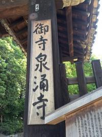 泉涌寺 - 笠間市 ともべ幼稚園 ひろばの裏庭<笠間市(旧友部町)>