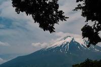 Fuji&富士 - 幸せな写真時間