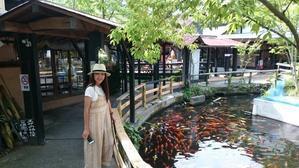 俺の旅④ - 尾道は丘の上のアジアンゲストハウスビュウホテルセイザン&タイ国料理タンタワン